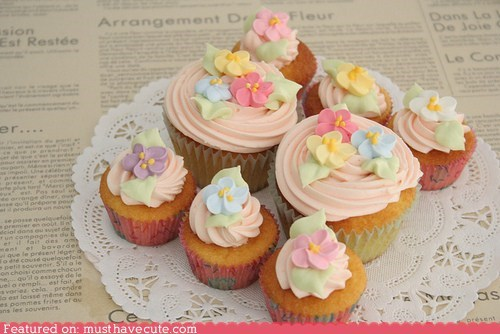 cupcakes,epicute,flowers,frosting,pink,spring