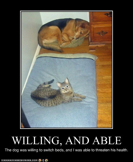WILLING, AND ABLE The dog was willing to switch beds, and I was able to threaten his health.