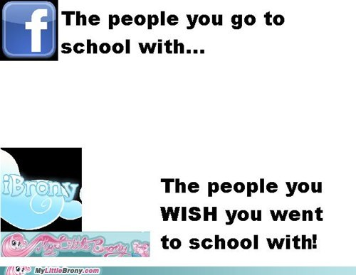facebook ibrony meta my little brony school - 6178113536