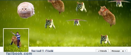 Cats HoverCat timeline - 6178913536