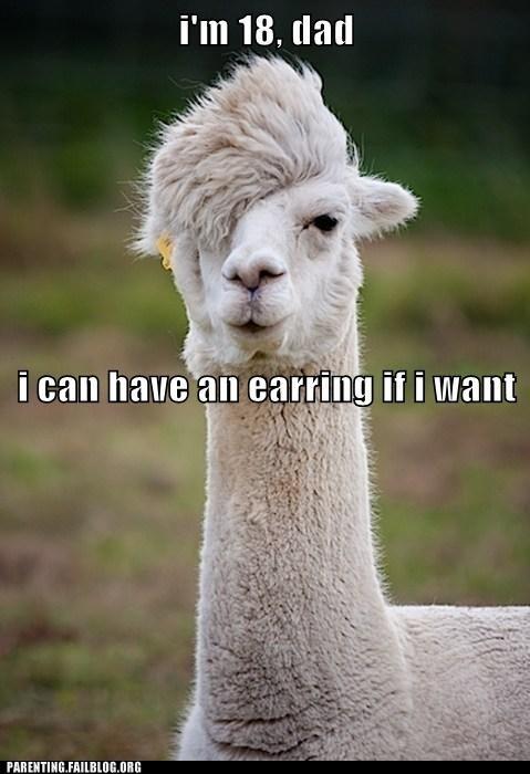 Earring,hipster llama,im-18-dad