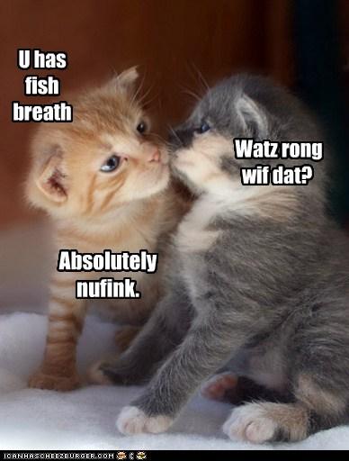 breath fish gross KISS smell tuna - 6179880448