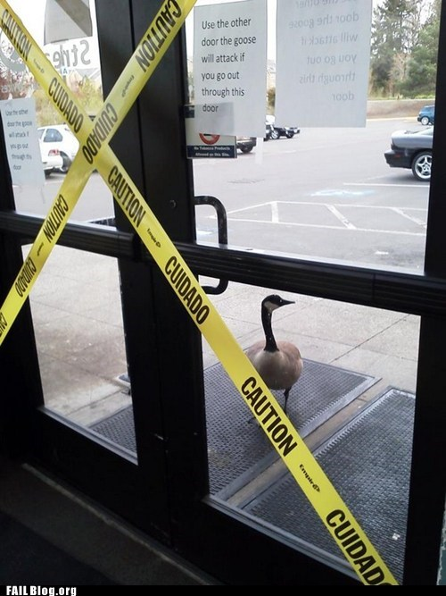 caution tape doors fail nation goose g rated Hall of Fame sign