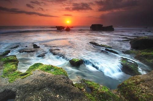 algae beach ocean rocks sunset - 6180137728