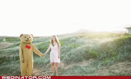 bear suit engagement funny wedding photos - 6180218368