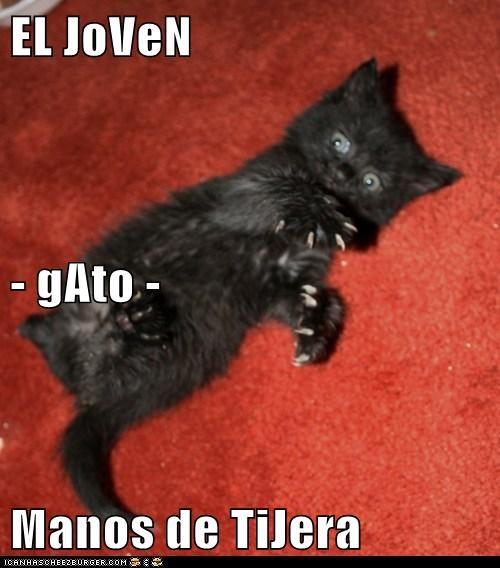 en español - 6180504832