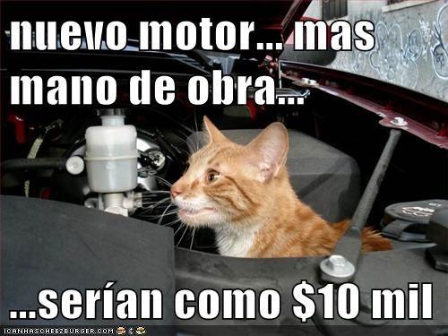 en español - 6180699904