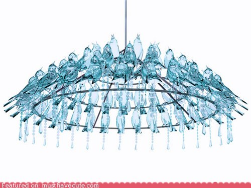birds chandelier crystal poop silly - 6180787968