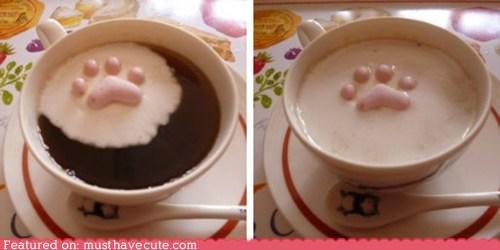 epicute hot chocolate kitty marshmallow melt paw sugar toes - 6180876032