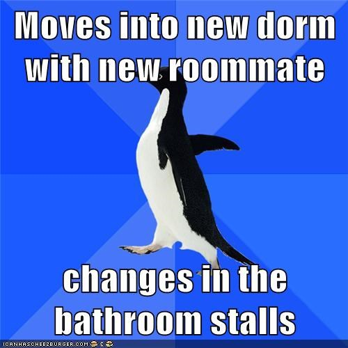 socially awkward penguin,roommates,truancy story
