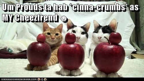 Um Prouds ta hab *cinna-crumbs* as MY Cheezfrend ☻