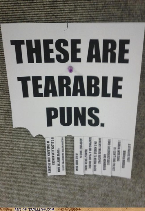 IRL Memes puns sign tearable terrible - 6184211456