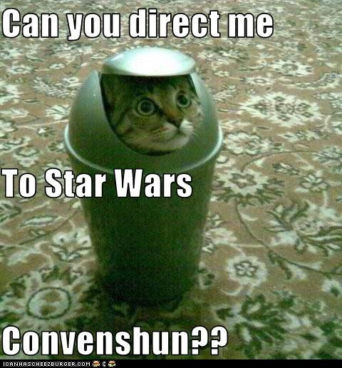 best of the week Cats classic classics convention cosplay costume Hall of Fame lolcats may the fourth Movie r2d2 robot star wars - 6184564480