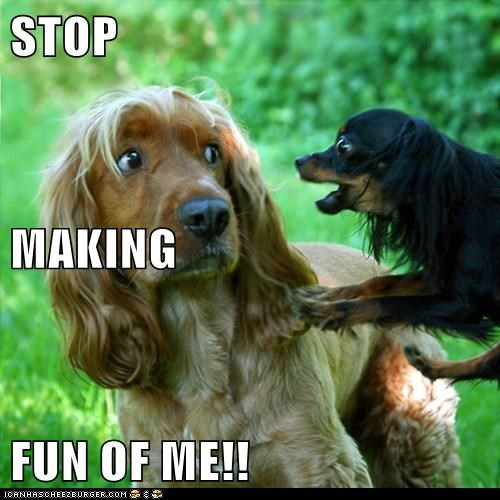 Cheezburger Image 6185193472