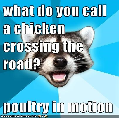 What Do You Call A Chicken Crossing The Road Poultry In Motion