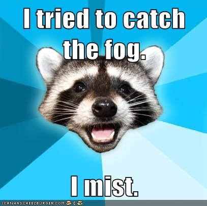 Lame Pun Coon,mist,particles,fog,air