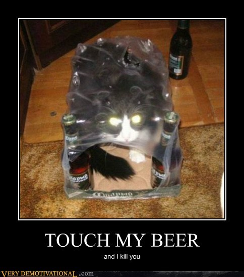 angry beer cat hilarious - 6186317056