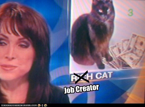 Cats jobs kittehs political pictures - 6186709504