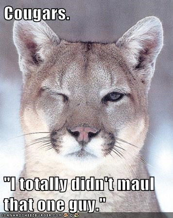 "Cougars. ""I totally didn't maul that one guy."""