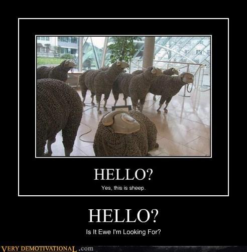 ewe hello hilarious pun sheep song - 6187187200