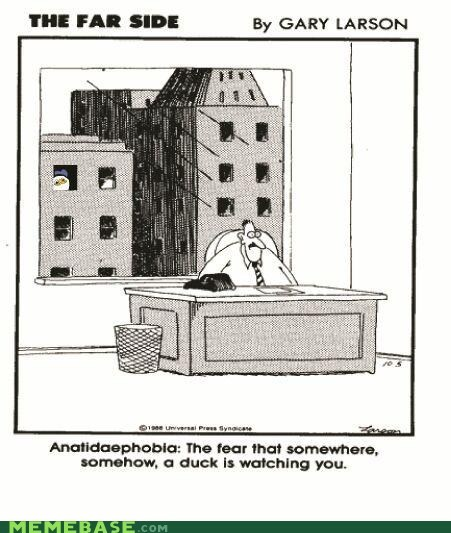 the far side anatidaephobia phobia cartoons gary larson - 6187275520
