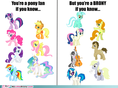 background ponies brony learn the difference meme pony fan - 6187550720