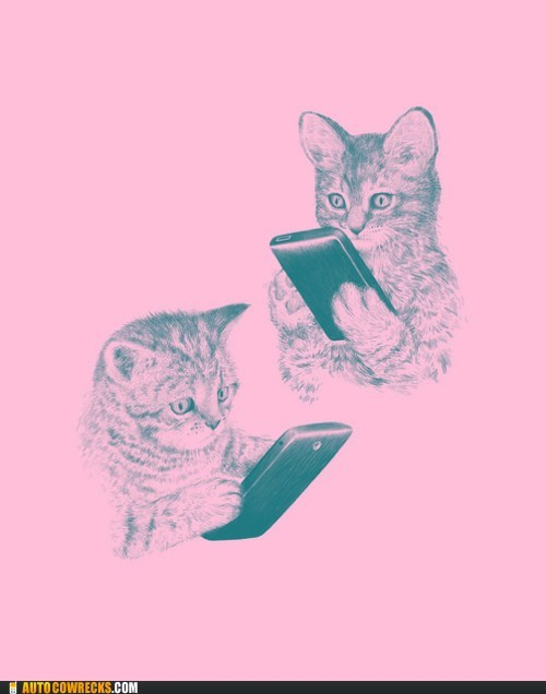 cats on phones,silly cats,that-wont-work