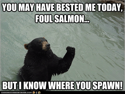 bears,fist shaking,Memes,salmon,Spawn,vengeful,vengeful bear