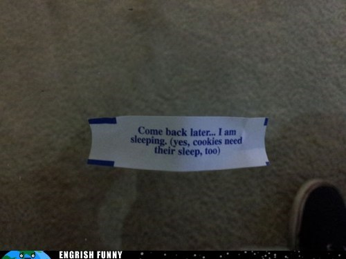 fortune cookie no fortune sleeping - 6188176128