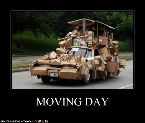 Moving Day Cheezburger Funny Memes Funny Pictures
