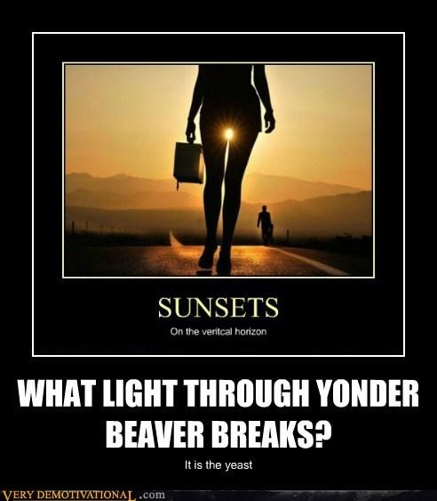 beaver,hilarious,lady bits,yeast