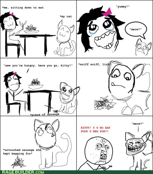 cat,picky,Rage Comics,troll,Y U NO