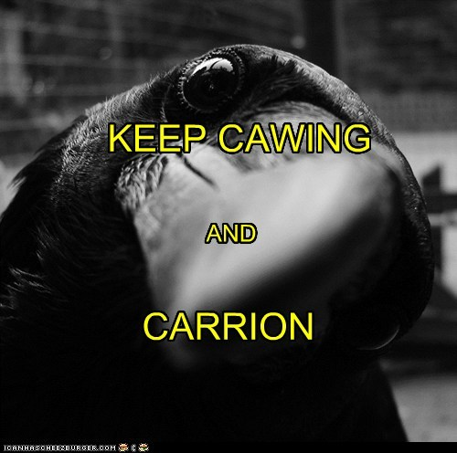birds,carrion,caw,crow,crows,keep calm and carry on,poster,puns,raven,ravens