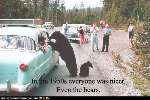 1950s 50s bears cars nice nicers nostalgia - 6189456128