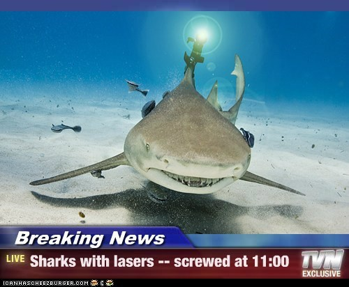 Breaking News - Sharks with lasers -- screwed at 11:00