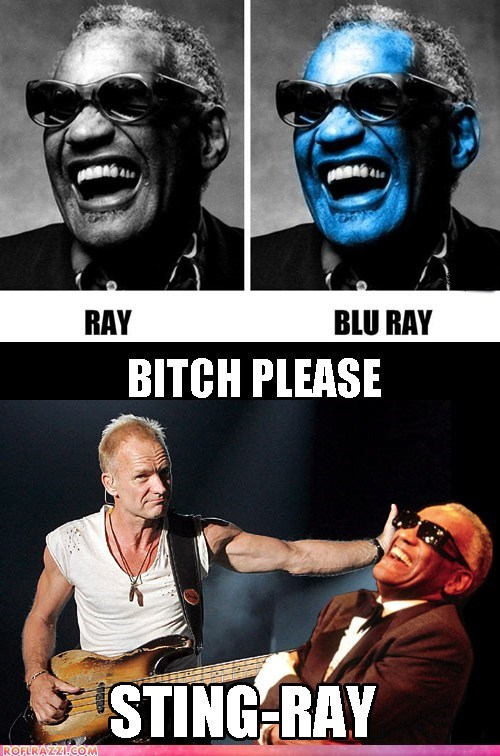 celeb,funny,Music,ray charles,sting