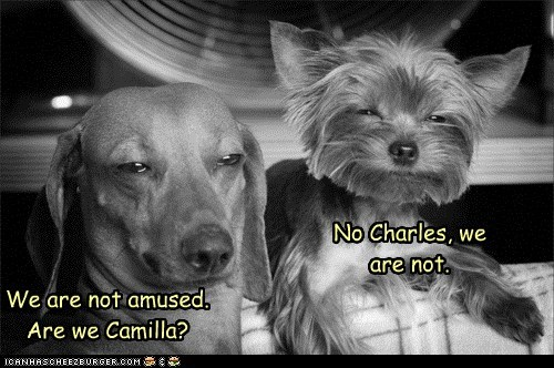 We are not amused. Are we Camilla? No Charles, we are not.