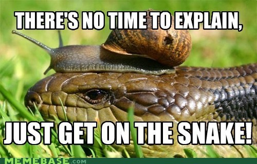 Memes,no time to explain,snail,snake