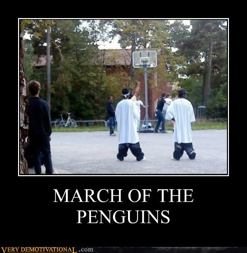 gangsta,hilarious,penguins,sagging