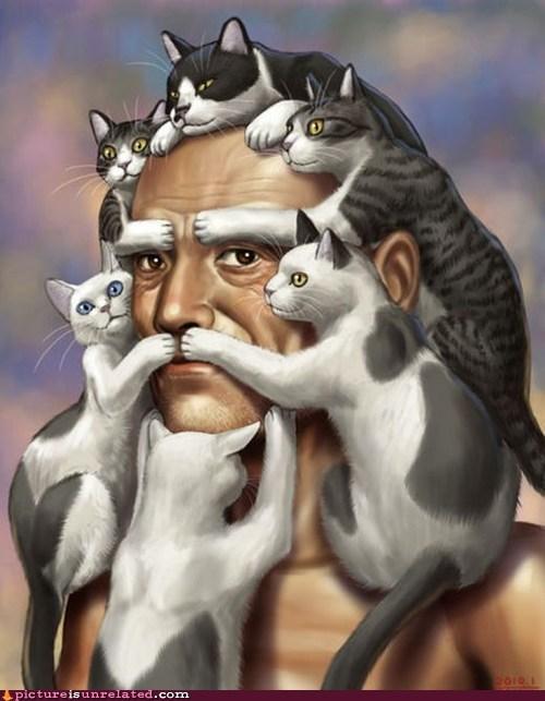 beard best of week cat face wtf - 6192220672