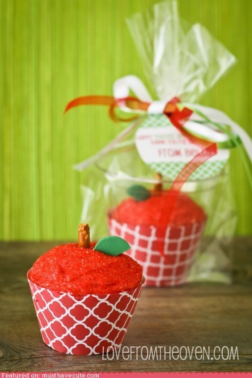apple,cupcakes,epicute,gift,stem,sugar,teacher