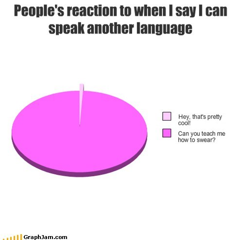 foreign language,Pie Chart,swears,what people say when