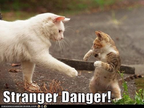 child kid parent run safe stranger stranger danger trust - 6193917952