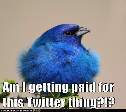 Am I getting paid for this Twitter thing?!?