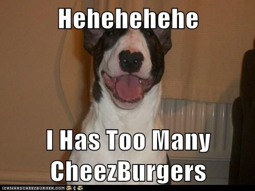 Cheezburger Image 6194273792