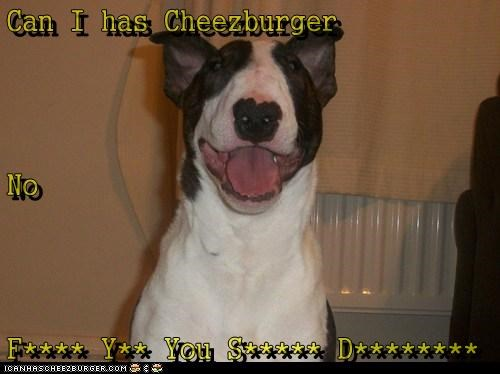 Cheezburger Image 6194769152