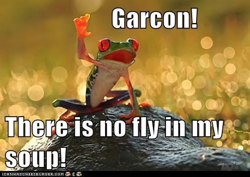 Garcon! There is no fly in my soup!