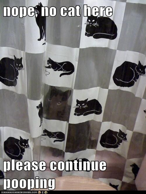 bathrooms camouflage Cats creepy curtain Hall of Fame hide poop shower toilet voyeurs watch watching - 6195345920