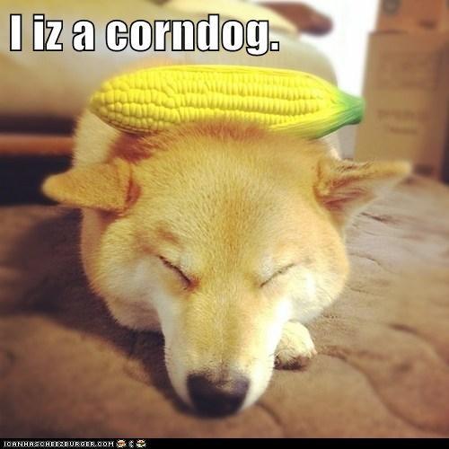 corn corndog dogs i iz pun puns shiba inu - 6197063168