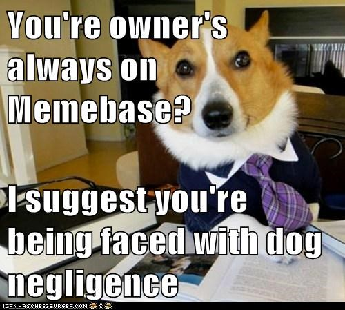 You're owner's always on Memebase?  I suggest you're being faced with dog negligence